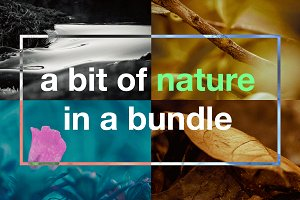A Bit of Nature in a Bundle