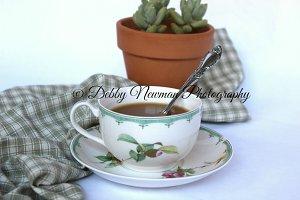 Cup of tea & succulent
