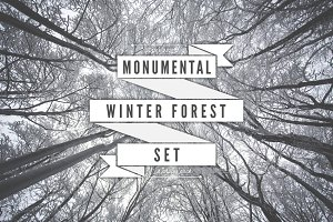 Monumental Winter Forest Photo Set