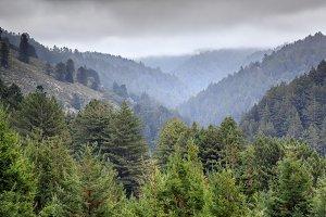 Whittemore Gulch Trail Views.