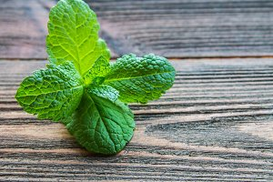 mint on a wooden background.