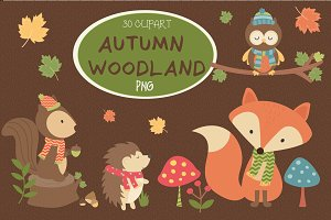 Autumn woodland Clipart