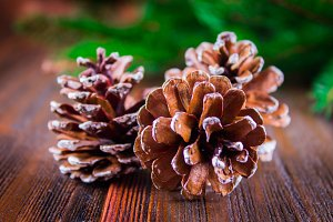 cones on the background of Christmas tree branches