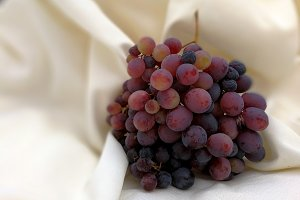 Bunch of grapes on white cloth