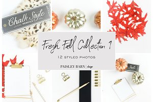 Fresh Fall Styled Photos Coll. 1