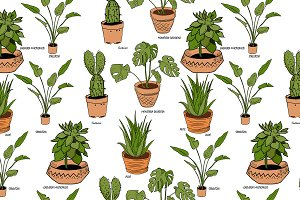 Color houseplants Vector pattern