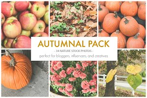 Autumnal Seasonal Stock Photo Pack