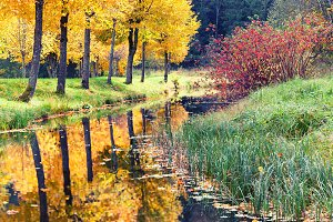Autumn in the park with a pond
