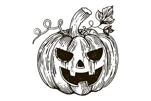 Halloween pumpkin engraving style vector