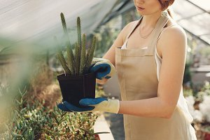 Woman holding a cactus plant