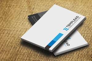 Corporate Business Card SE0293