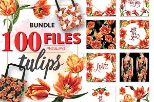 Tulip PNG watercolor flower set
