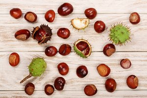 chestnut isolated on a light wooden background. Top view