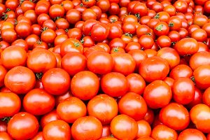 Display of ripe tomatoes