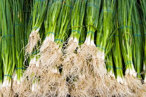Green onions at market