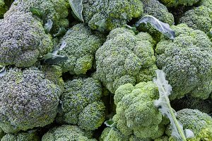 Green broccoli at market