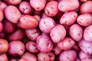Fresh red potatoes