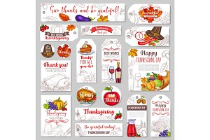 Thanksgiving day sketch holiday vector tags