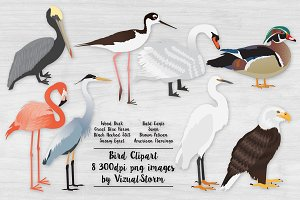 American Bird Clip Art Illustrations