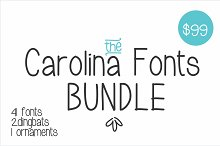 41 fonts bundle at only $40