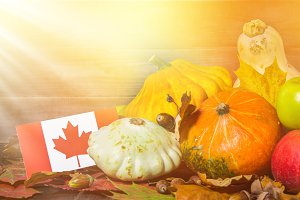 Happy Thanksgiving Day in Canada. Vegetables, pumpkins, squash, apples, maple and oak leaves, acorns on a wooden background. Harvest and yellow autumn leaves on a wooden table.