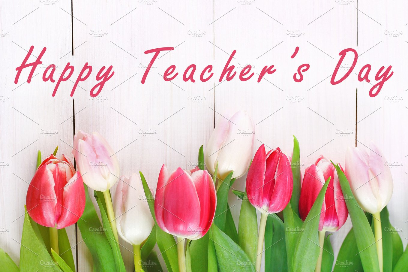 Happy Teachers Day With Tulip Flower Message For Teacher