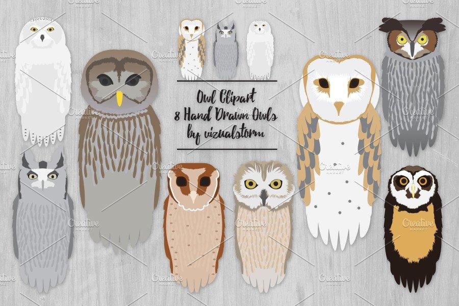 Realistic Owl Clip Art Illustration ~ Illustrations ...