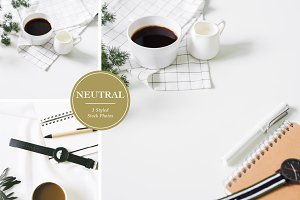 Neutral Desk Styled Stock Photos