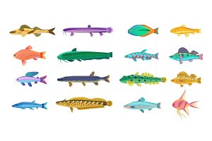 Sea and Freshwater Fishes with Bright Scales