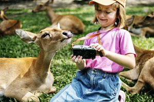 Girl taking selfie with deers