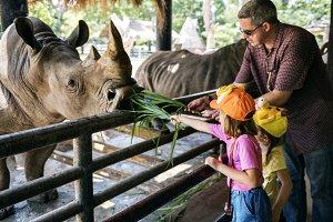 Girls feeding rhino at the zoo