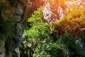 Goynuk Canyon, national nature park