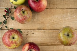 Real apples, ecological harvest on w
