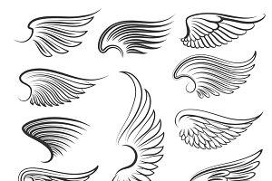 Vintage heraldic wing set
