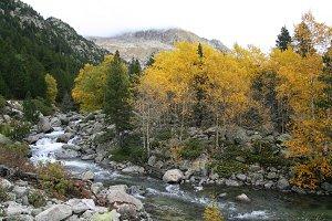River at autumn