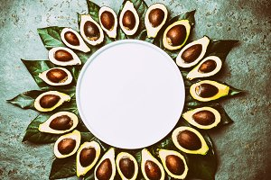 Avocado. Frame made from avocado palta and avocado tree leaves a