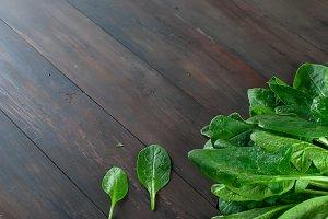 Leaves organic fresh spinach