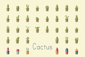 Illustration of cactus