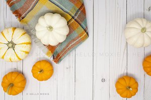 Fall Flat Lay Stock Photography