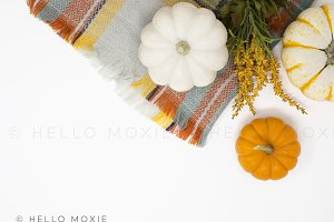 Fall Styled Stock Photography