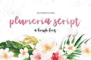 Plumeria Brush Script