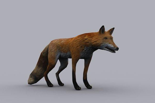 3D Animals: PROTOFACTOR  - FOX fbx only