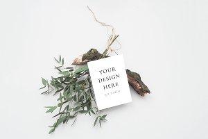Rustic Eucalyptus Stationery Mockup
