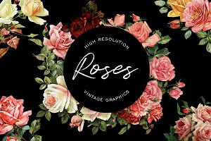 Vintage Rose Graphics