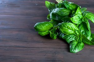 Bunch fresh green basil