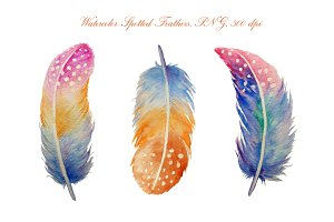 Watercolor Spotted Feathers Clipart
