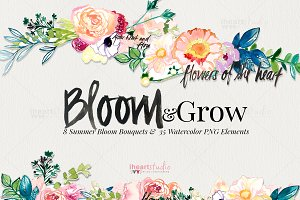Bloom & Grow Watercolors
