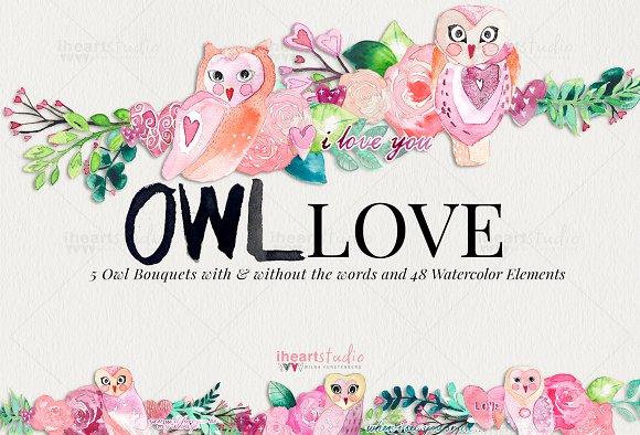 OWL Love Watercolors