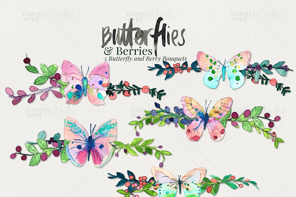 Butterflies & Berries Watercolors in Illustrations - product preview 1