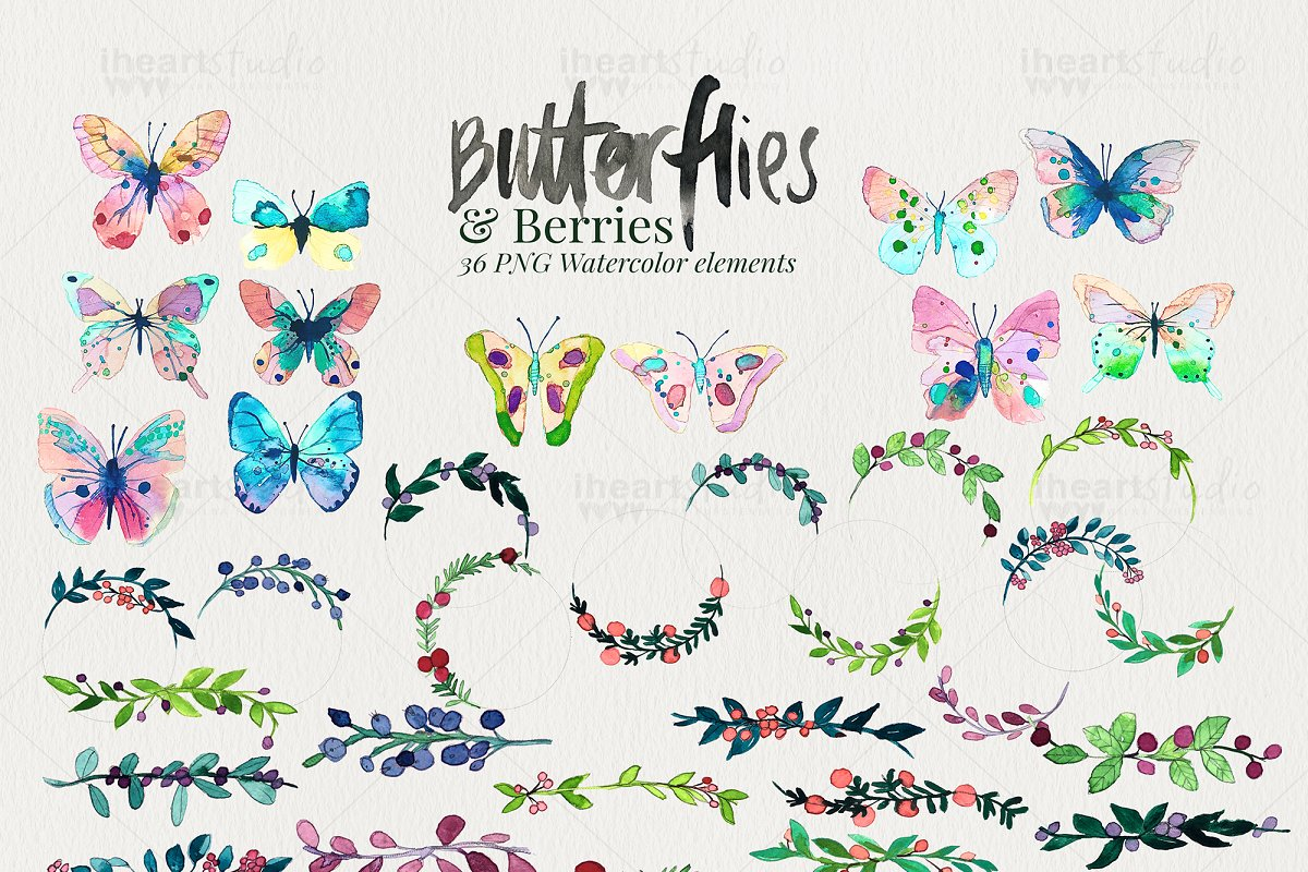 Butterflies & Berries Watercolors in Illustrations - product preview 2